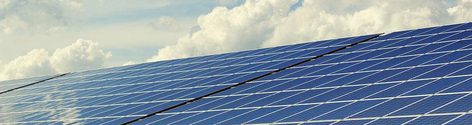 Ausschuss für Klima und Umwelt startet unter Grüner Regie